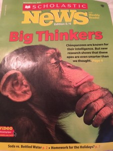 Scholastic News - Chimpanzee Intelligence